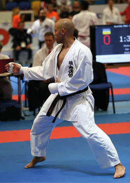 Shotokan karate do international	- Belgium